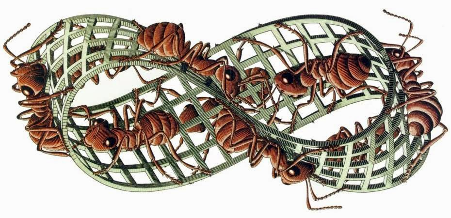 Mauritius Cornelius Escher, Striscia di Moebius ii, xilografia, 1963