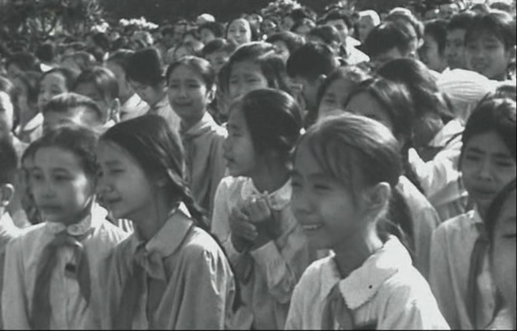 rencontre femme vietnamienne brecht